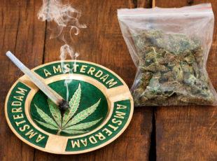 דאצ'ניוז: שמח למעשני הסמים – קוקאין בנמל רוטרדם